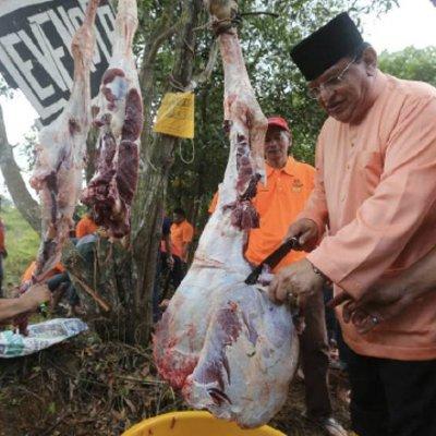 135 Lembu Korban Di Parlimen Putrajaya