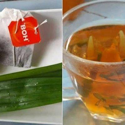 Air Tea O Halia Penyegar Badan Siapa Sangka Minuman Ini Boleh Hapuskan Lemau Badan Sekelip Mata