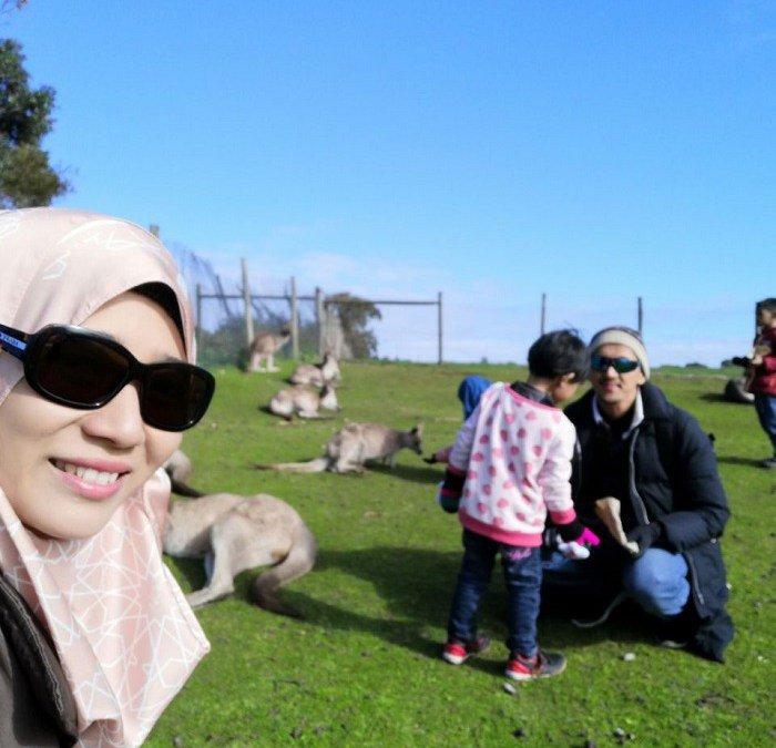 Bermain Dengan Kanggaru Di Wild Life Park Philips Island