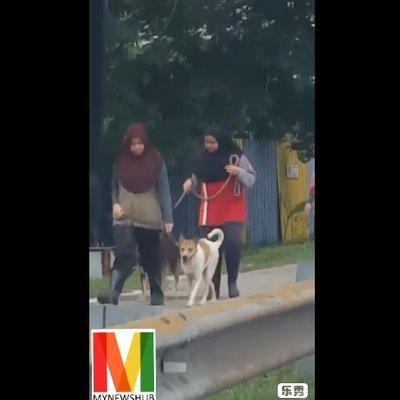 Caprice Komen Isu Wanita Bertudung Bawa Anjing Berjalan Yang Tular