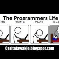 Cerita Lawak Kahwin Dengan Programmer