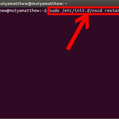 Dns Not Loaded Automatically When Wicd Being Used