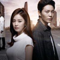 Drama Korea Yong Pal