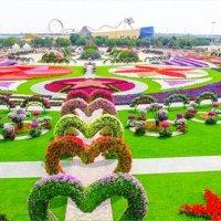 Dubai Miracle Garden Taman Ajaib Dubai