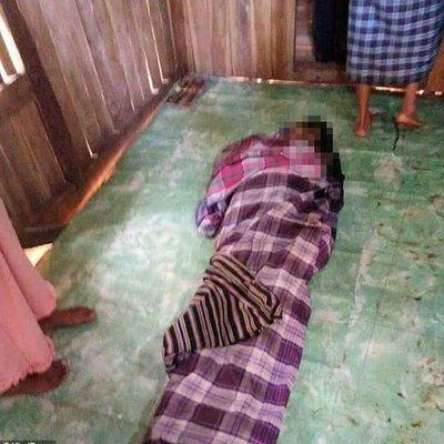 Ibu Kepada 2 Orang Anak Ditelan Ular