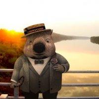 Iklan Raya Kontroversi Wombat Disangka Babi
