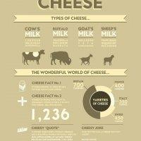 Info Lengkap Jenis Cheese Dan Kegunaannya
