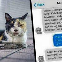 Inilah Sikap Melayu Dengki