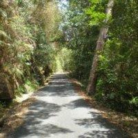 Jalan Batu Kurau Ke Taiping Seram Berhantu