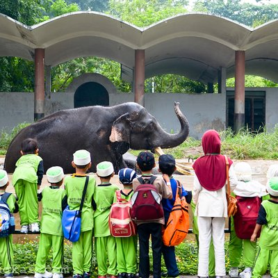 Kenapa Perlu Bawa Anak Anak Ke Zoo Johor