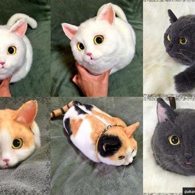 Kucing Ini Sebenarnya Beg Tangan
