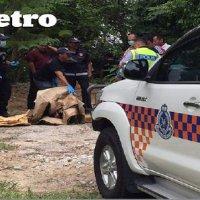 Mayat Wanita Sudah Reput Ditemui Disumbat Dalam Kotak