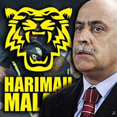 Nelo Vingada Quits Harimau Malaya After 6 Losses