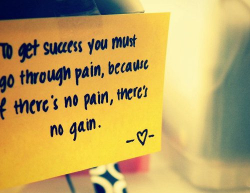 essay on in life there is no gain without pain