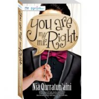 Novel You Are My Mr Right