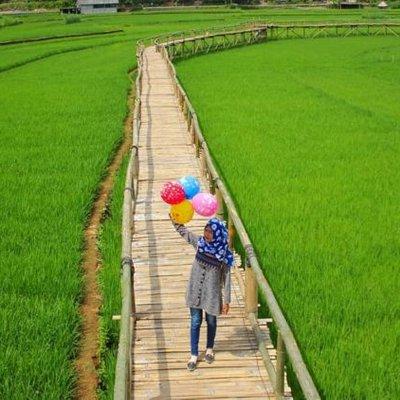 Persawahan Sukorame Destinasi Hits Yang Lagi Viral Di Bantul Kapan Liburan Ke Sana