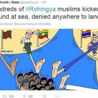 Rohingya Dari Kaca Mata Aktivis Palestin
