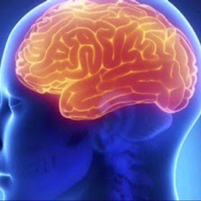 Saintis Temui Bahagian Paling Jahat Dalam Otak Manusia Kebanyakkannya Ada Pada Penjenayah