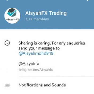 Forex group telegram indonesia