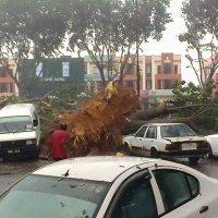 Sg Petani Diserang Ribut Puting Beliung