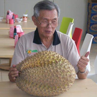 Teknik Belah Buah Durian Yang Tular