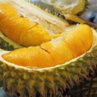 Teruknya Reaksi 4 Jejaka Jerman Makan Durian