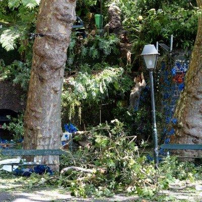 Video Detik Detik Tumbangnya Pohon Yang Menyebabkan Belasan Orang Terbunuh Di Festival Keagamaan