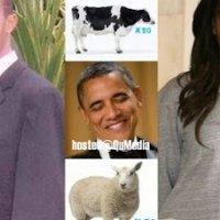 Wow 50 Ekor Lembu Dan 70 Ekor Biri Biri Untuk Hantaran Kahwen Anak Obama